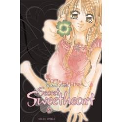 VOL. 6 SECRET SWEETHEART