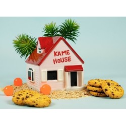 BOITE A COOKIES KAME HOUSE DRAGON BALL